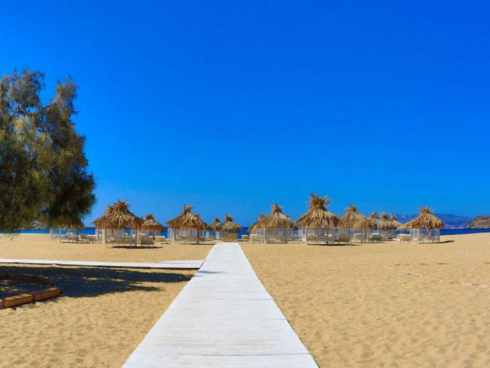 Free Beach Bar