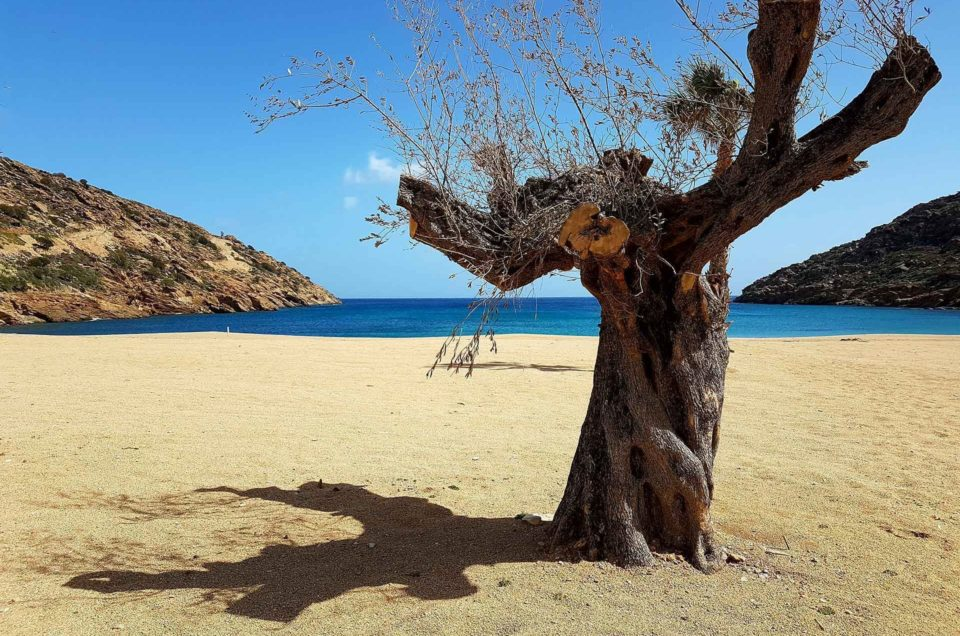 The Beautiful island of Ios in Spring Photos & Videos